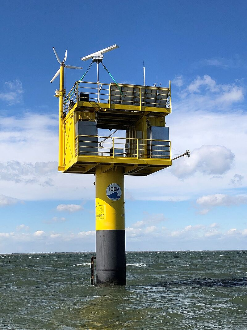 KI zum Schutz des Meeres